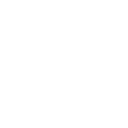 Whatsapp Logo White